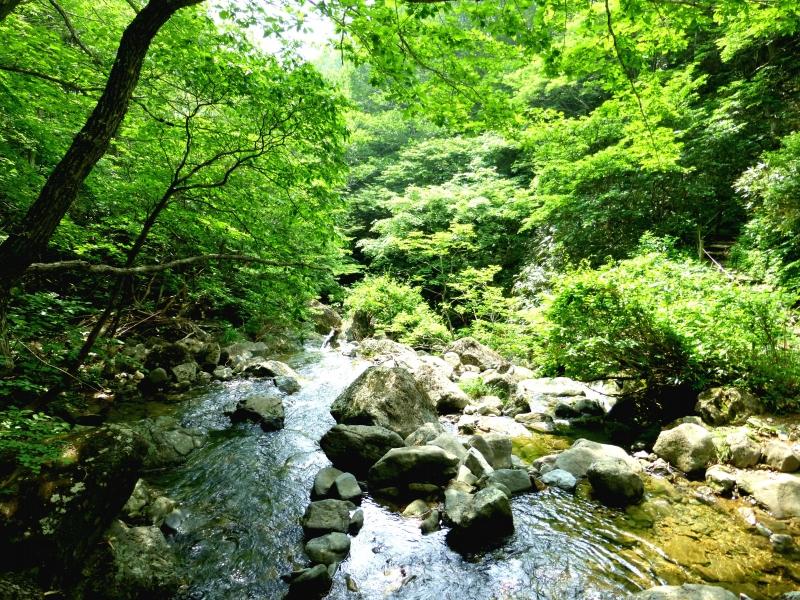 福島の自然を満喫!あだたら渓谷自然遊歩道を巡る週末ハイキング