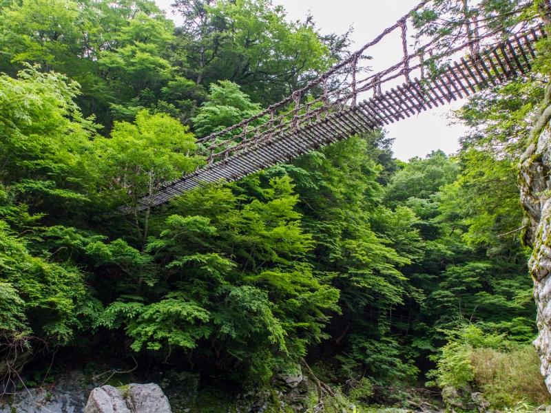 かずら橋から一足のばして[徳島・奥祖谷二重かずら橋]に行こう♪