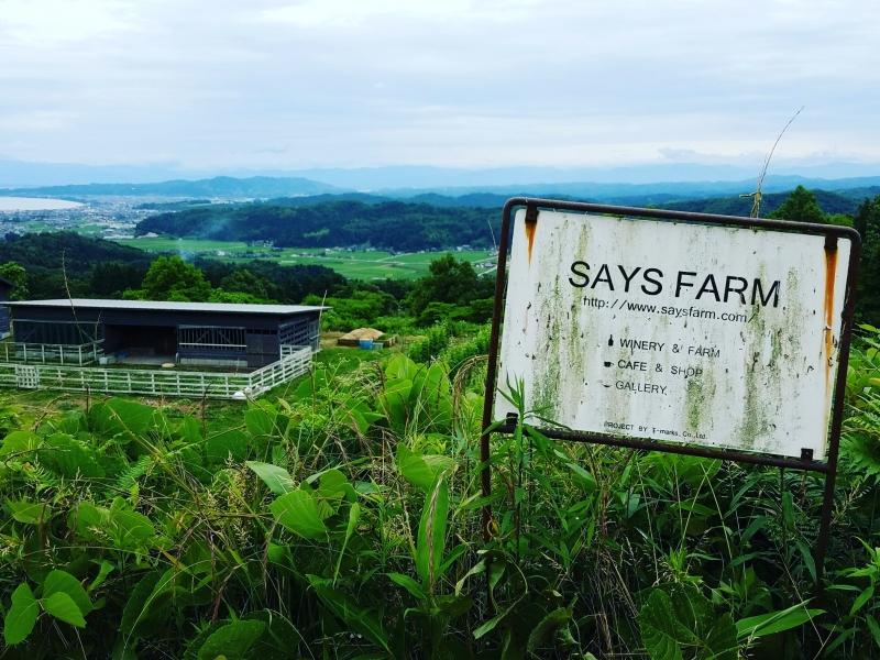 景色抜群!富山県氷見のおすすめワイナリー「SAYS FARM」