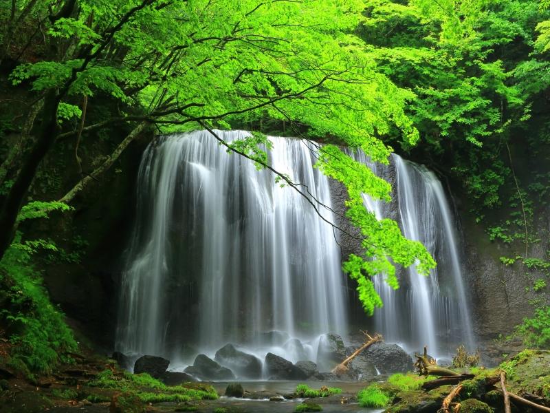 まるで水スダレのよう!福島「達沢不動滝」でマイナスイオンを浴びる