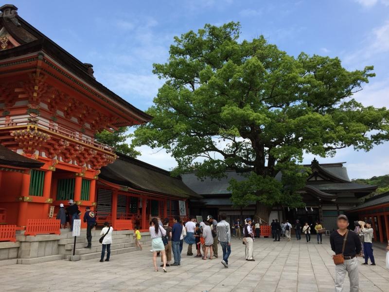 [大分] 参拝前に八幡神社・八幡宮の総本社「宇佐神宮」の謎を知っておこう