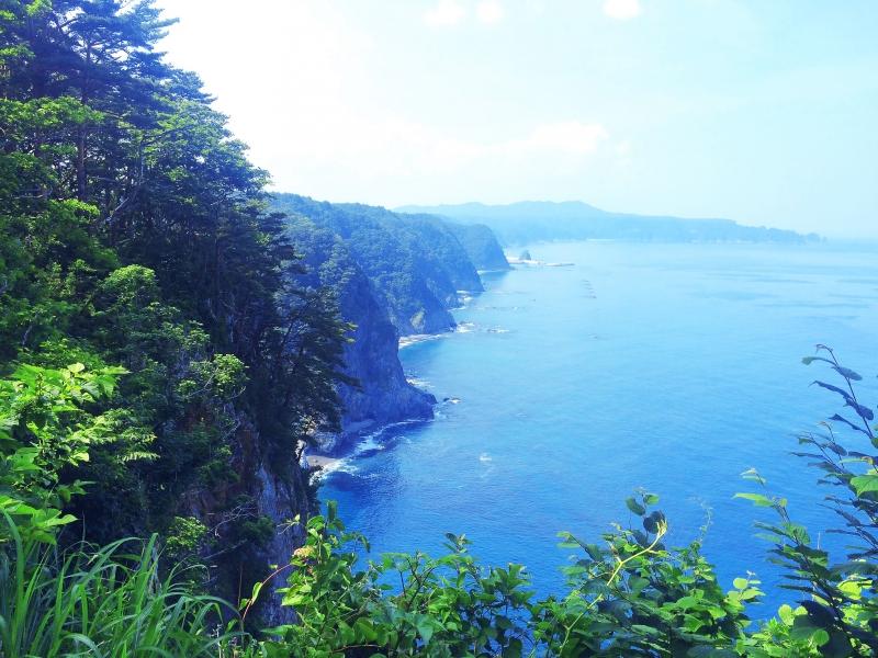200mの断崖からのぞむ、壮大な絶景!岩手県・鵜の巣断崖にいこう