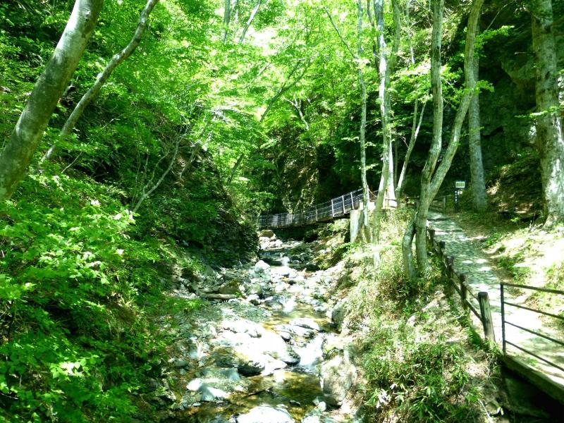[那須]美しい緑でリフレッシュ!塩原渓谷・竜化の滝散策ツアー