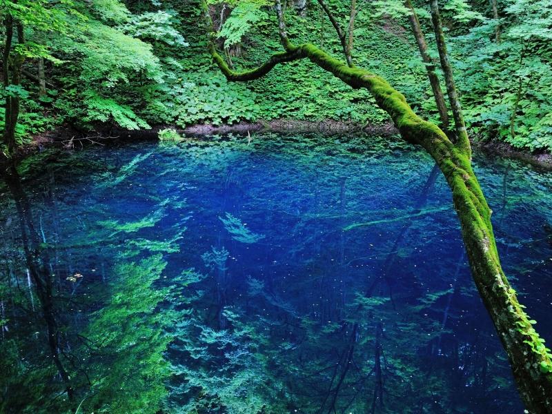 【青森県】ここだけは行きたい!定番のおすすめ観光スポット5選