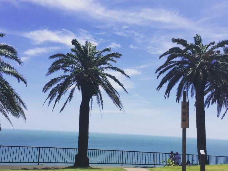 【宮崎・日南海岸】真っ青な海沿いドライブのお気軽おすすめスポット