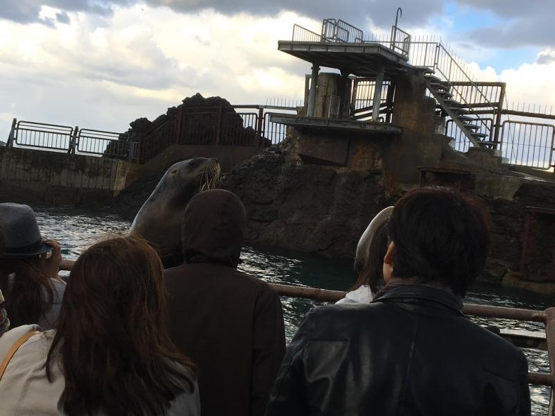 【北海道】圧巻のトドショー!大自然に囲まれたおたる水族館で海獣に会おう!