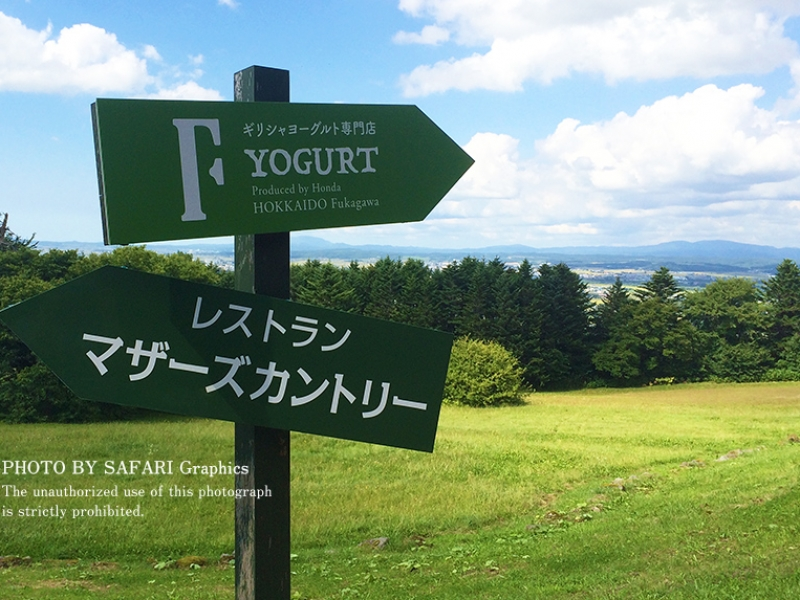 【北海道・深川】フォトジェニックスポット「イルムの丘」と「トトロ峠」へGO!