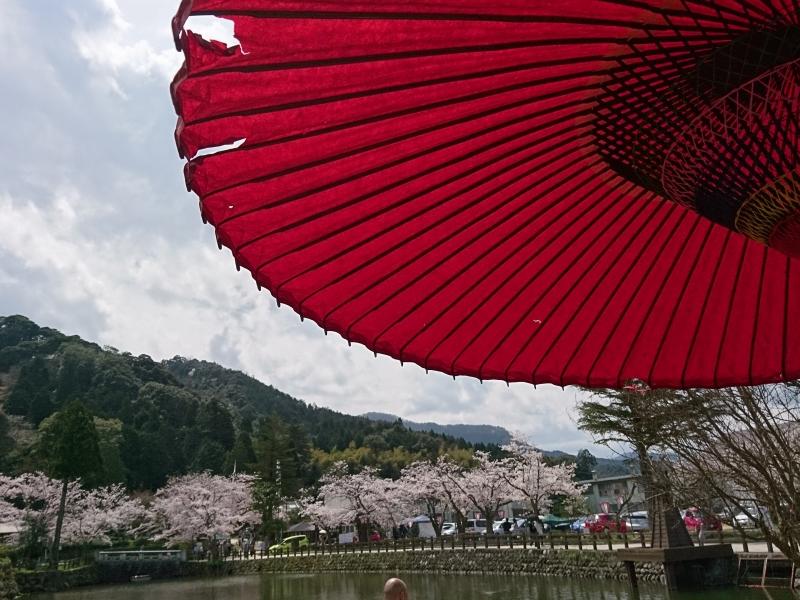 魅力満載の城下町!鳥取県・鹿野の見どころスポット10選