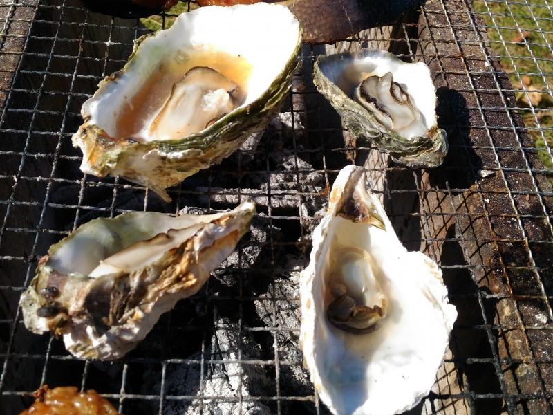 長崎県佐世保市九十九島で味わう!【九十九島かき食うカキ祭り】