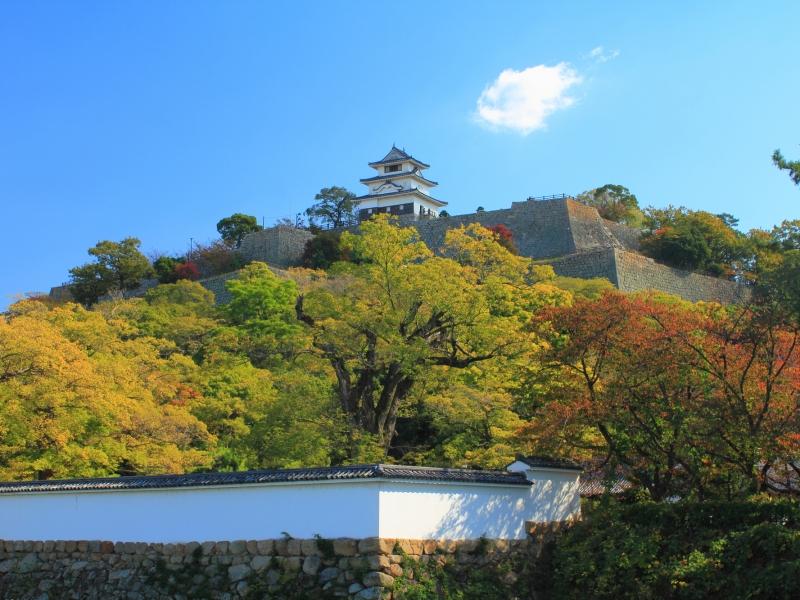 【香川】意外と知らない!?3つの日本一を持つ、高くて小さなお城「丸亀城」