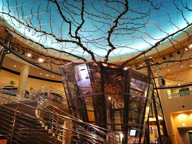 アートな梨の世界に驚かされる!鳥取二十世紀梨記念館 なしっこ館