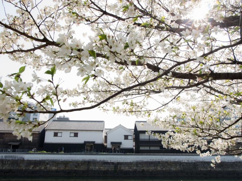 古き和と洋が織り成すお洒落な町、長崎出島で異国情緒を満喫しよう!