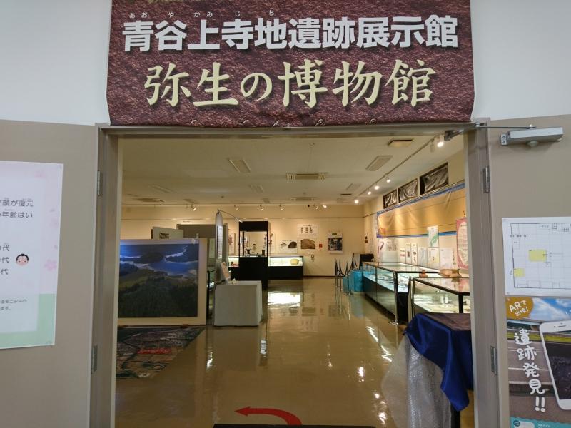 【鳥取】出土品から垣間見える蘇った弥生の世界!青谷上寺地遺跡展示館