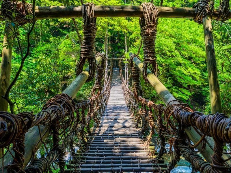 祖谷渓のかずら橋と大歩危の遊覧船。徳島の秘境渓谷満喫プラン!
