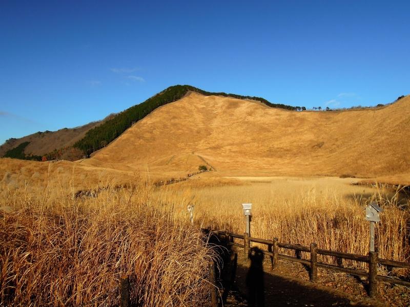 【奈良】大自然を体感!曽爾高原散策と絶景温泉「お亀の湯」