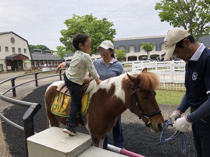 大人から子供まで自然や馬と遊べる!三木ホースランドパーク【神戸】