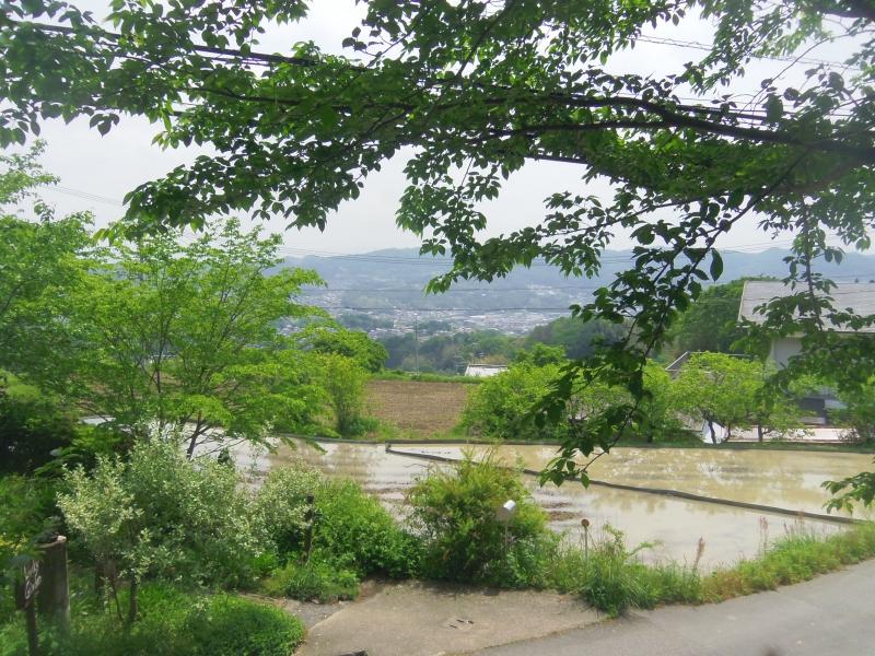 【奈良】大阪市内から30分!緑豊かな生駒市を散策しよう