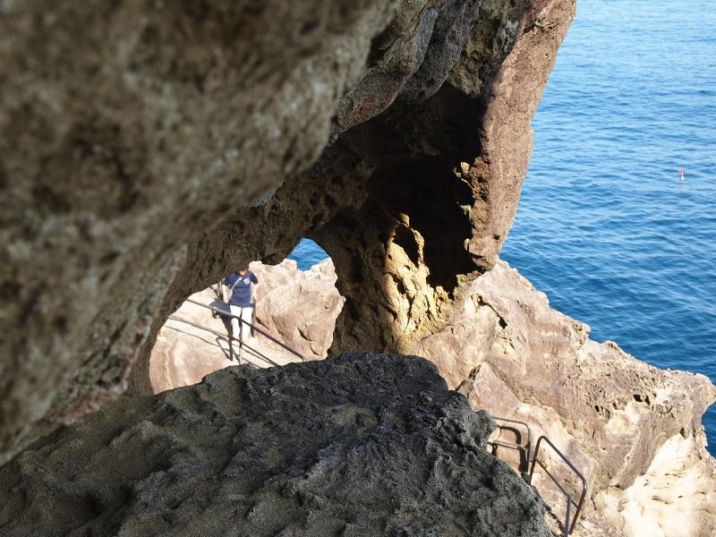 【三重県】伊勢より南も魅力的!巨木、奇岩、巨石、そしてウミガメ