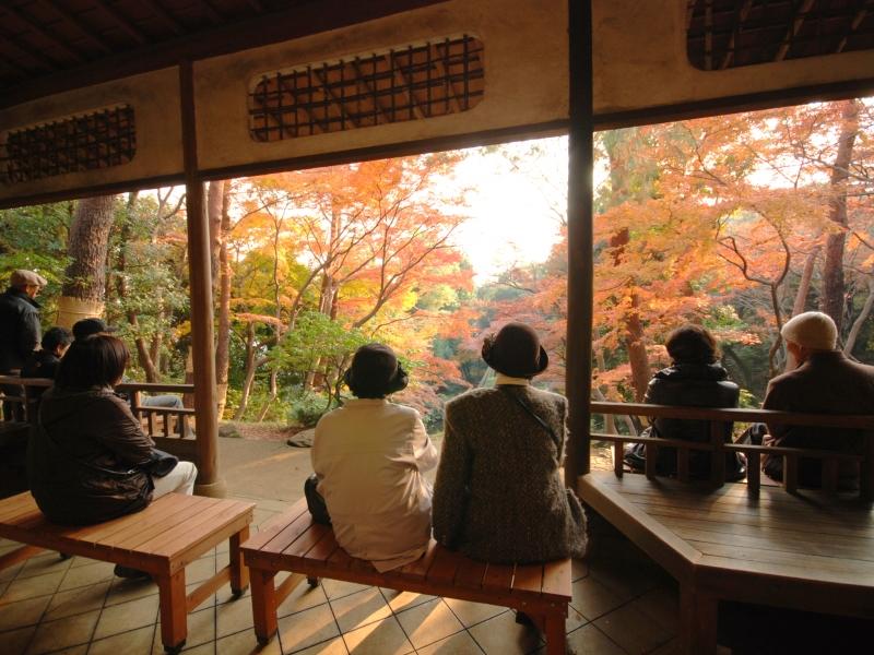 東京・国分寺の魅力溢れる!おすすめの散策スポット