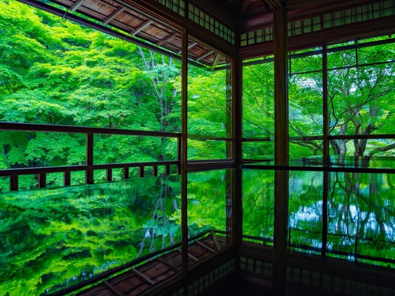 うっとり眺めていたい!京都の絶景スポット15選