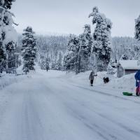 町でオーロラ観測できる冬のフィンランド・サーリセルカと ...