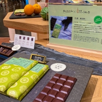 green bean to bar CHOCOLATE 京都店