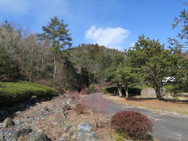 近江富士花緑公園 [おうみふじかりょくこうえん] | 料金&クチコミ比較